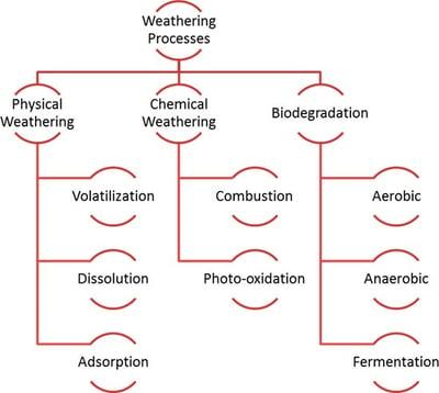 BBJ Contaminated Blog Fig. 1